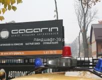 Спил и обрезка деревьев на автостоянке Gagarin
