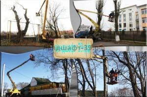 Удаление дерева с помощью автовышки